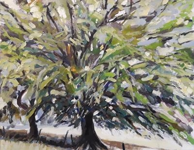 Beech in Summer by Kevin Tole, Painting, Oil on canvas