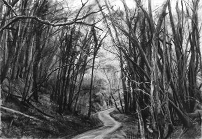 Danescombe Valley, Track to the Mine. by Kevin Tole, Drawing, Various charcoals