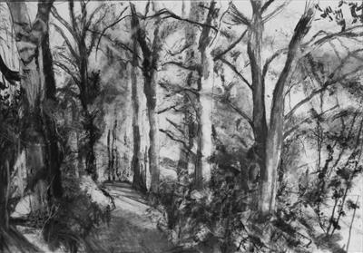 Danescombe Valley, Upper Track to Cotehele by Kevin Tole, Drawing, Various handmade charcoals