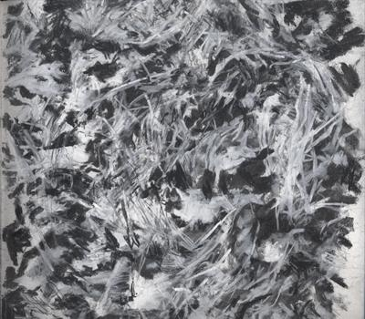 Grass and Leaves by Kevin Tole, Drawing, Beech Charcoal, Carbon pencil and white Conte